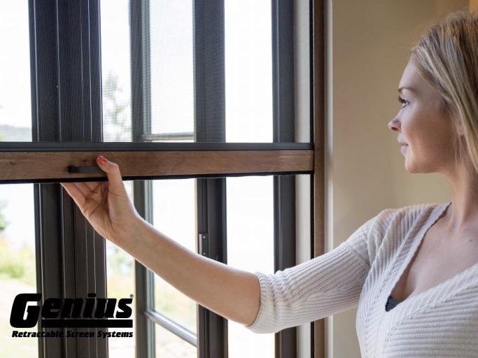 Window Screens 1